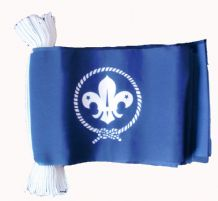 SCOUTS (BLUE) BUNTING - 9 METRES 30 FLAGS